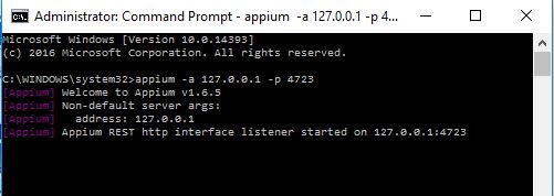 appium server running